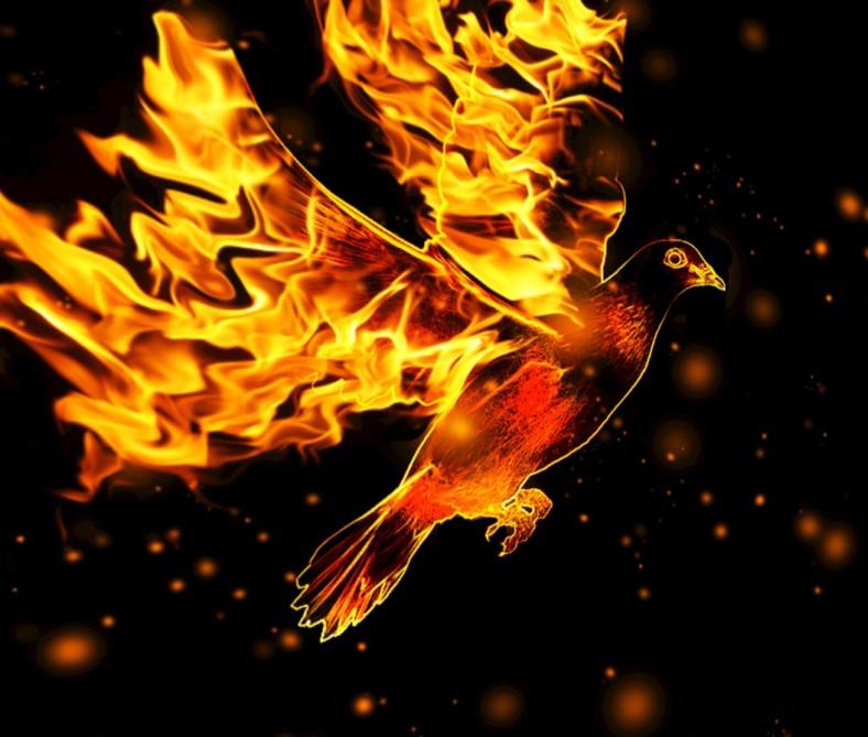 holy fire636cb08a1e9130f0d314c40a320abebf