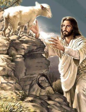 jesus saving lambbde28512652d8296e9a060a2682468ec
