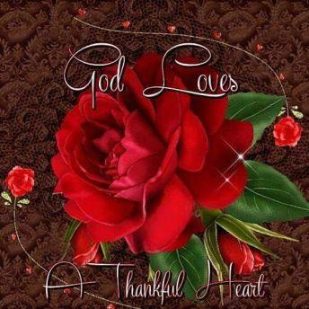 258691-God-Loves-A-Thankful-Heart