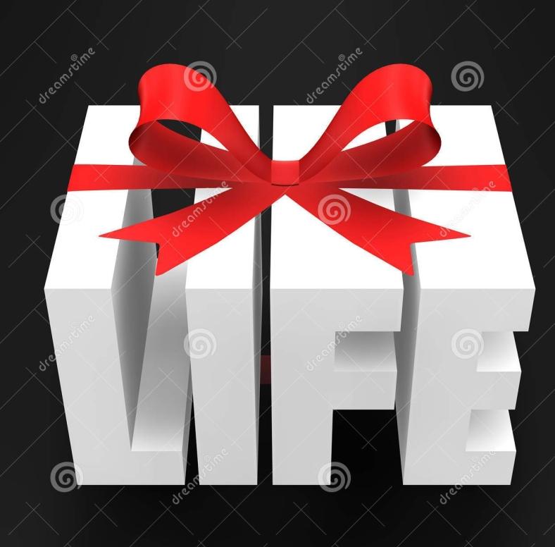 gift-life-20677728.jpg